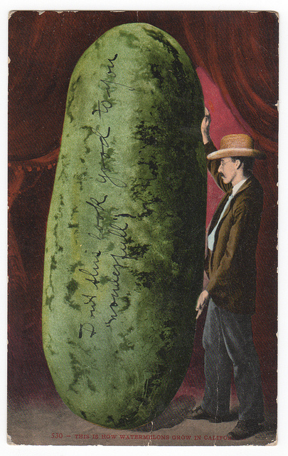 Giant California Watermelon