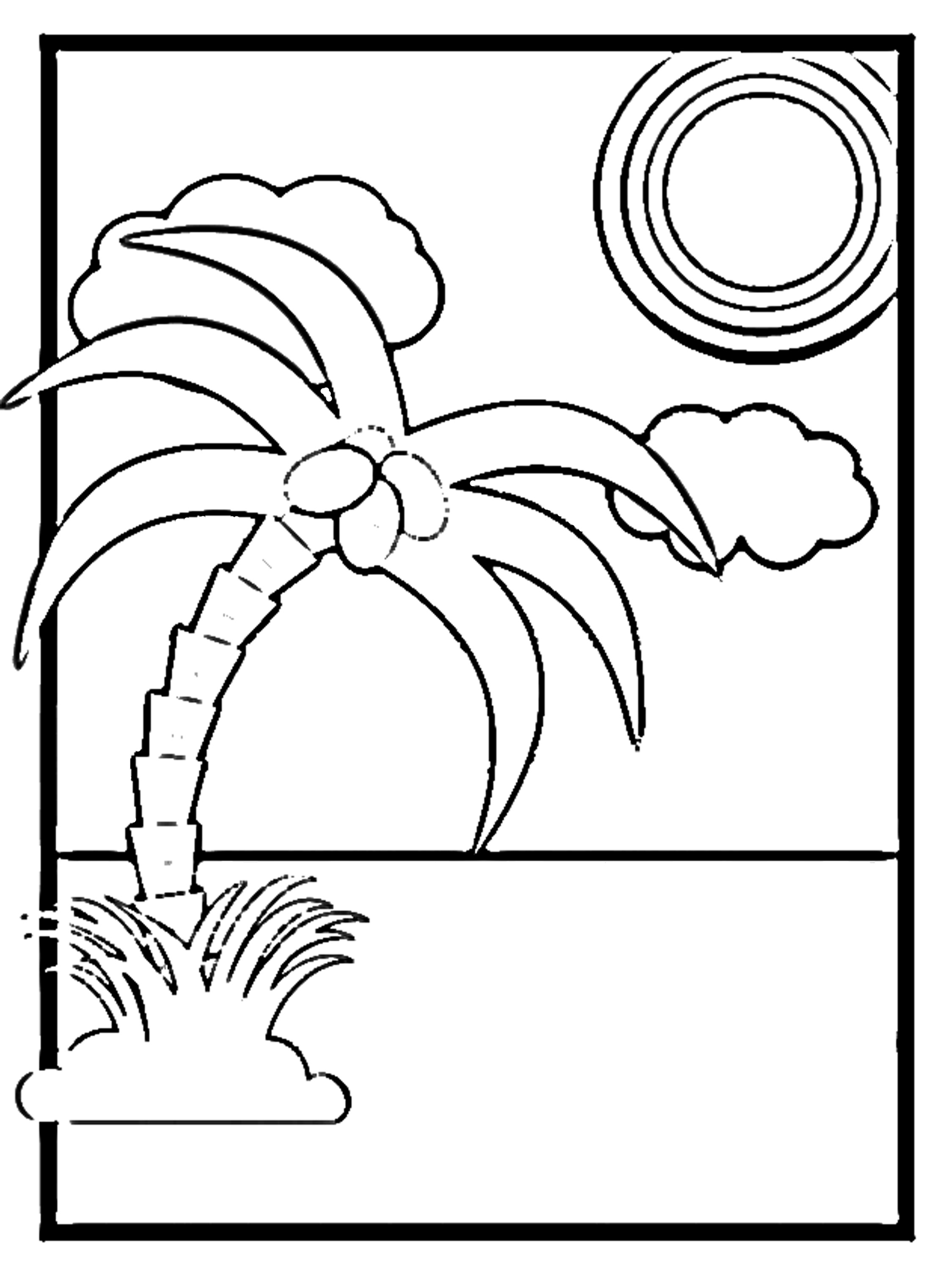 Coconut palm coloring page.