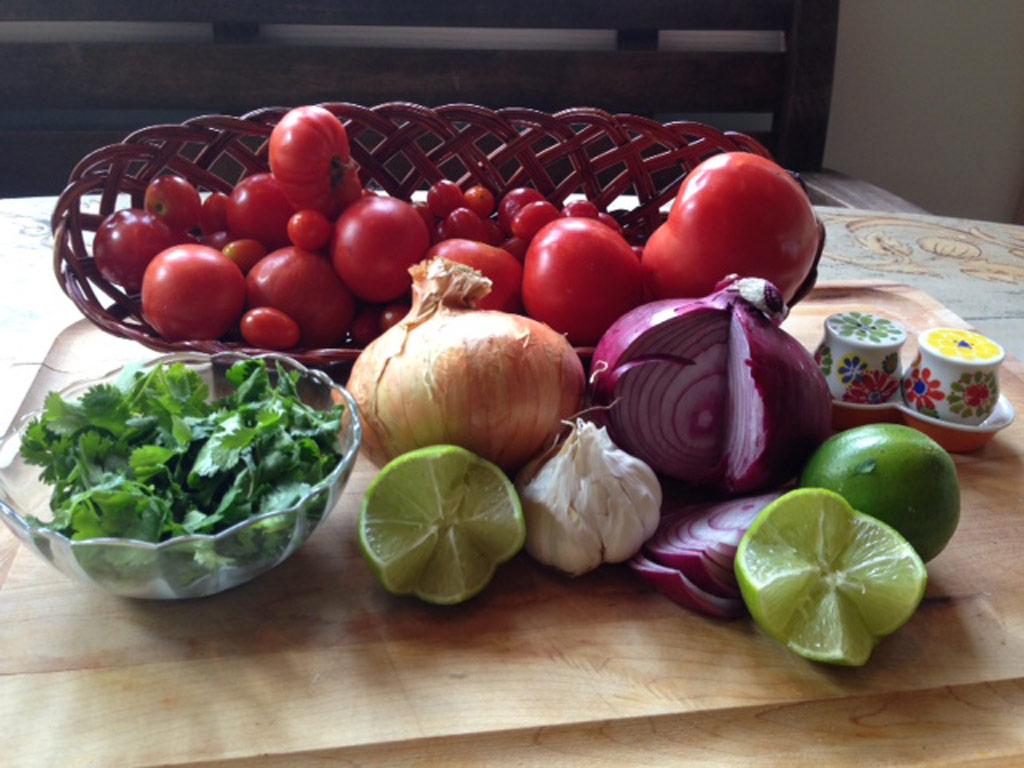 tomato-salsa-ingredients-web