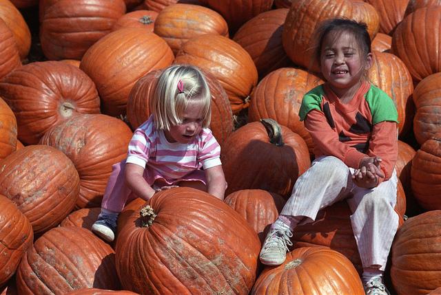 kids on pumpkins